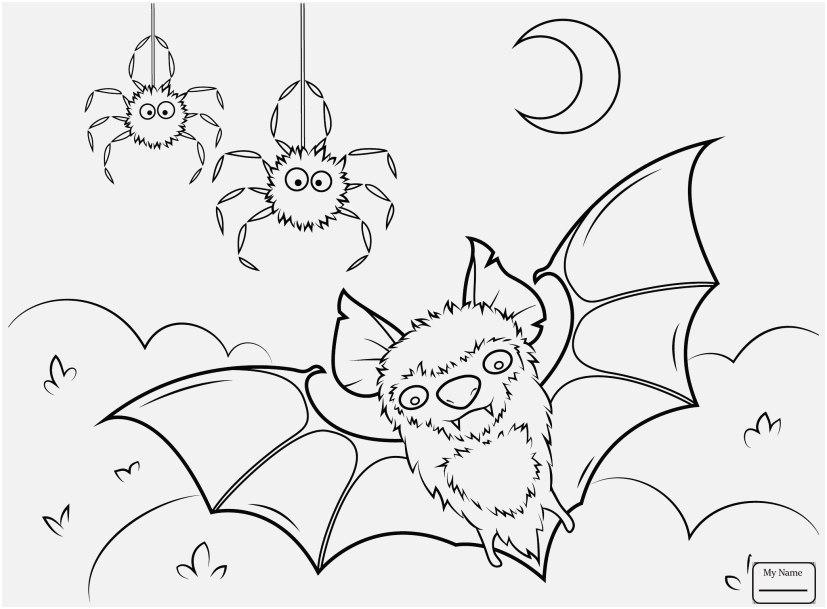 827x609 Bat Coloring Pages Display Bats Cute Bat Mammals Coloring Pages