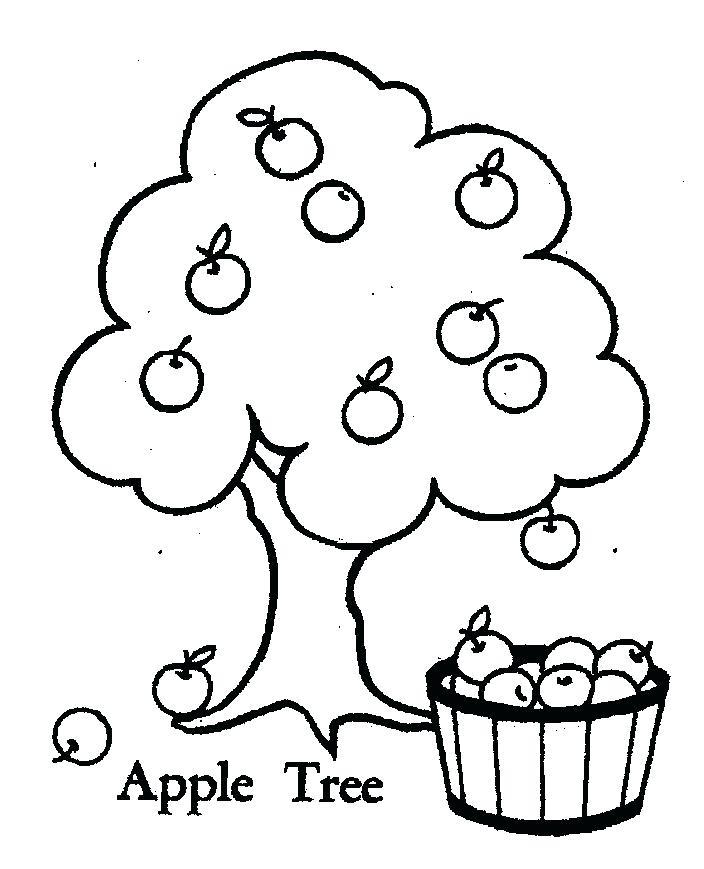 704x869 Apple Tree Coloring Page Plain Ideas Tree Coloring Page Coloring