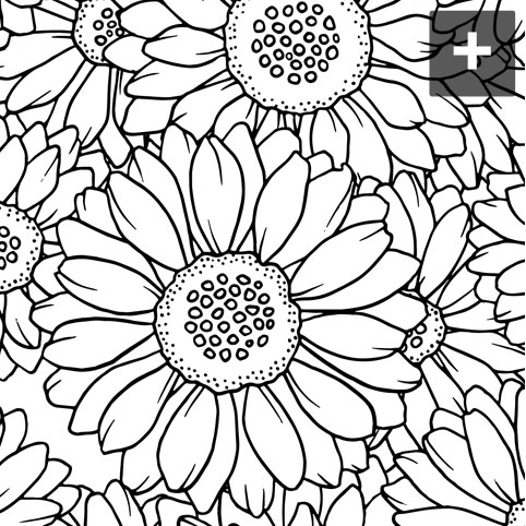 482x482 Full Coloring Pages Full Coloring Pages Free Printable Coloring
