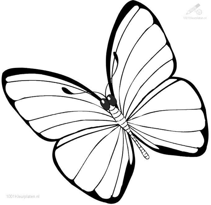 680x661 Full Page Coloring Pages