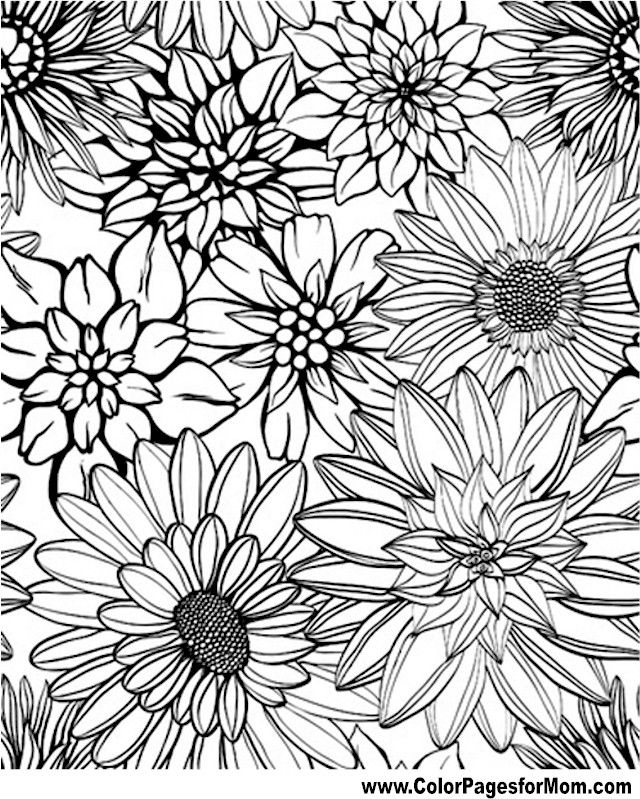 640x799 Flower Coloring Page Coloring Therapy Flower