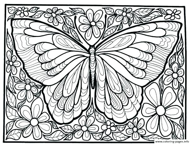 618x465 Butterfly Color Page Butterfly Coloring Images Butterfly Coloring
