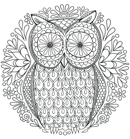 525x559 Free Coloring Pages Adult As Inspiring Free Owl Coloring Page