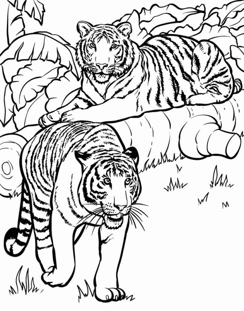 805x1024 Marvel Pictures To Colour Coloring Pages Printable