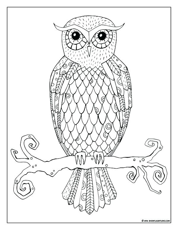 600x776 Coloring Pages Owl Hard Owl Colouring Pages Owl Color Pages Funky
