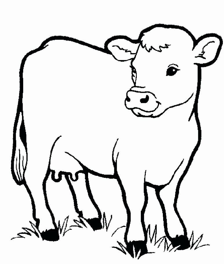 773x910 Funny Animal Coloring Pages Collection Farm Animal Coloring Sheets
