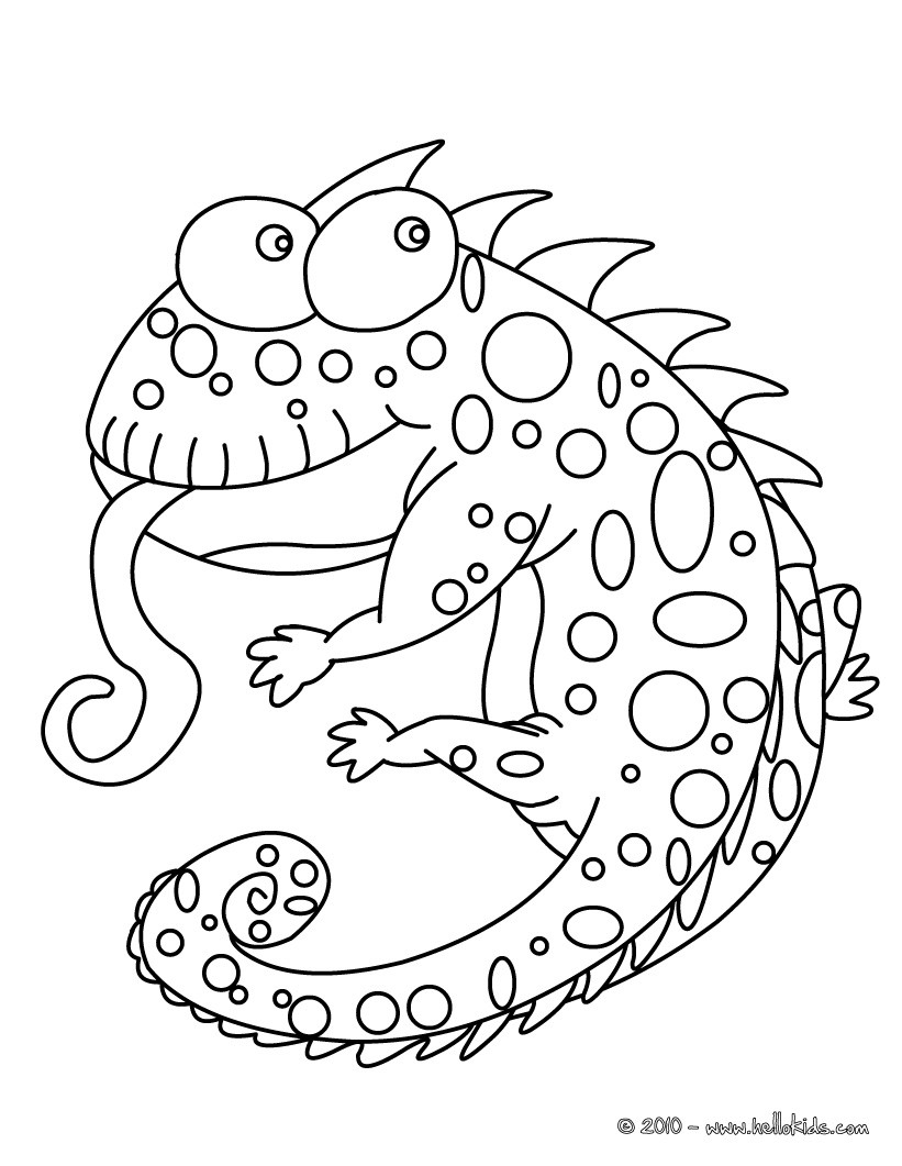 821x1061 Chameleon Coloring Pages