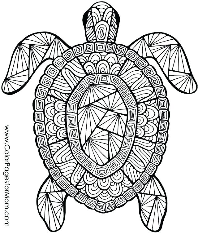 640x755 Coloring Page Animals Turtle Mandala Coloring Pages Printable