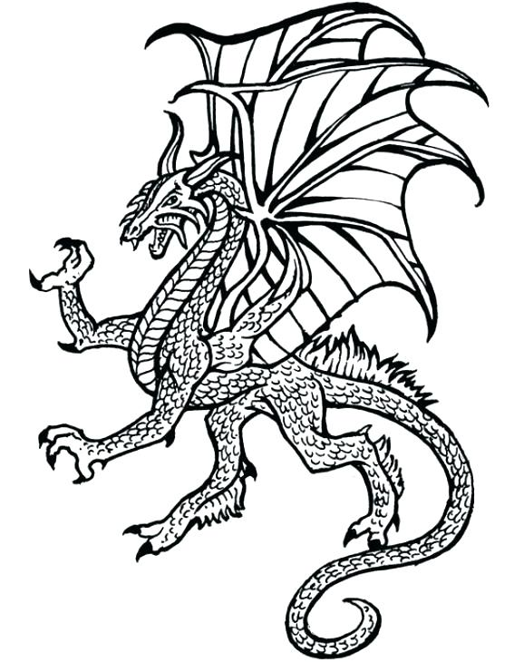 567x730 Real Dragon Coloring Pages Beautiful Real Dragon Ring Pages Image