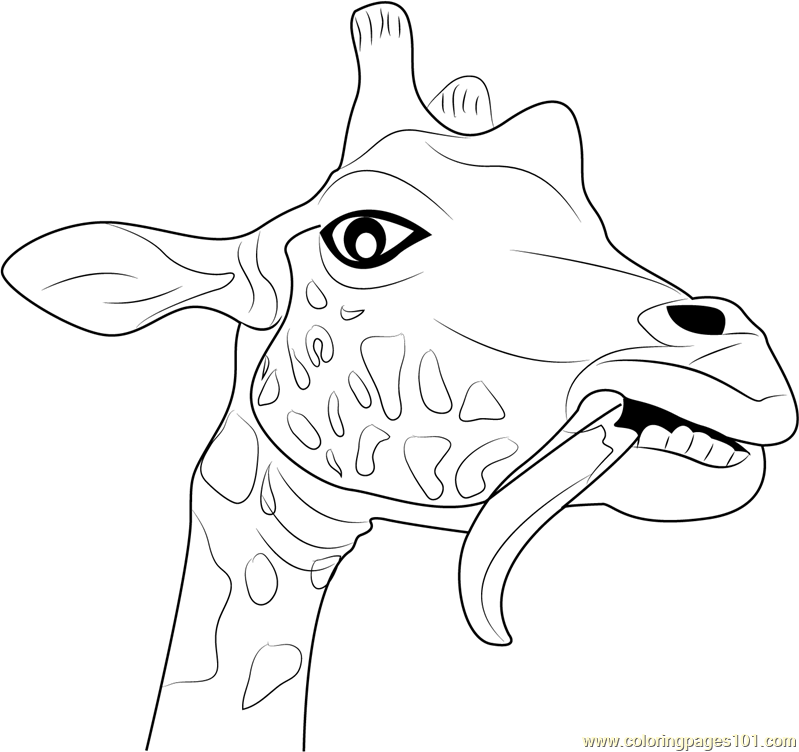 799x752 Giraffe Funny Face Coloring Page