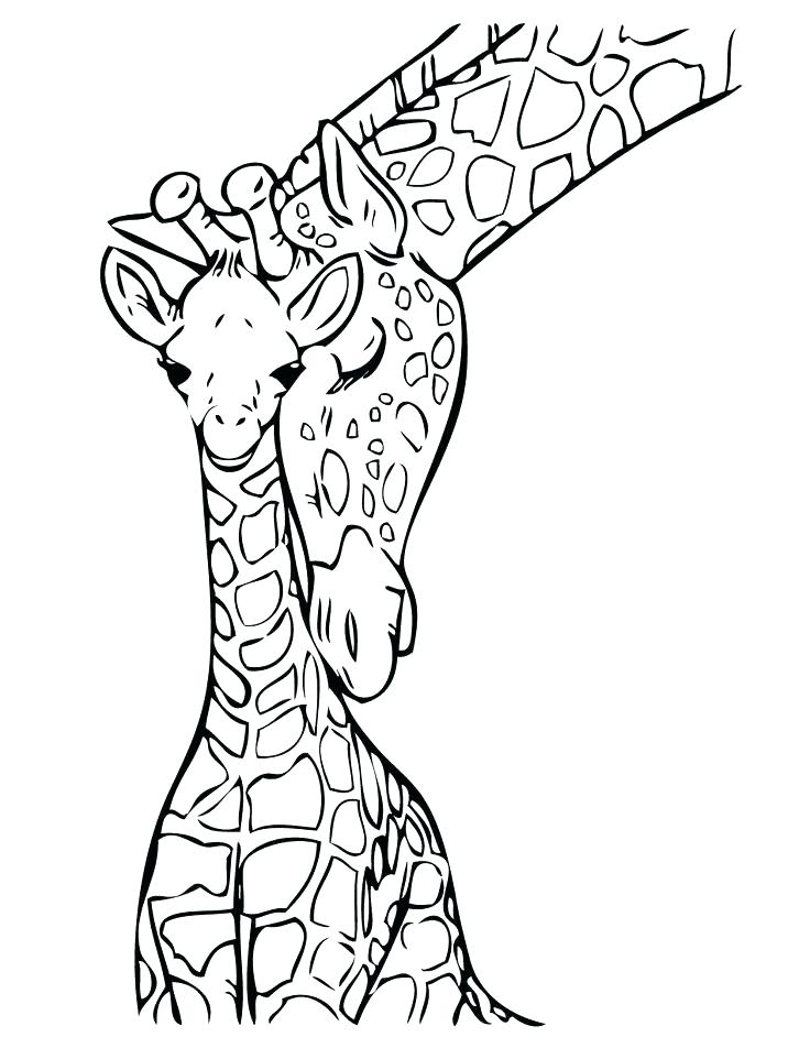 736x952 Cute Giraffe Coloring Pages Baby Giraffe Coloring Pages As Well As