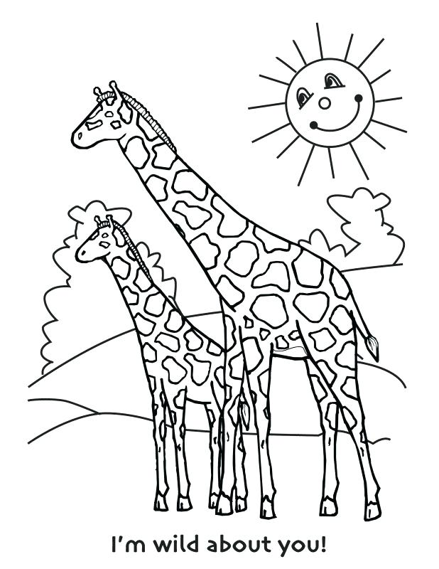 618x800 Cute Giraffe Colouring Pages Printable Coloring Giraffe Toy