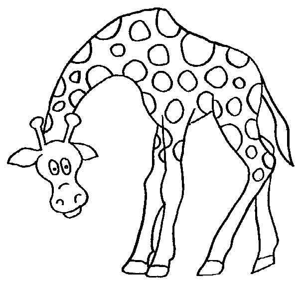 610x573 Giraffe Coloring Pages Printable Kids N Fun Coloring Pages