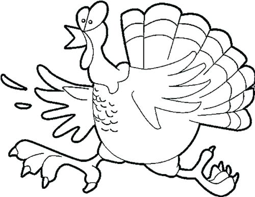 500x388 Silly Turkey Coloring Pages