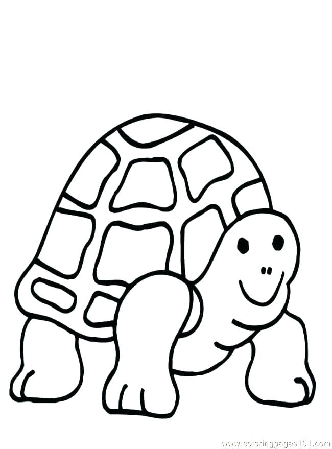 650x879 Ninja Turtle Coloring Books Ninja Turtle Coloring Pages Online