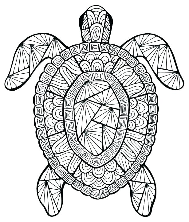 Funny Turtle Coloring Pages at GetDrawings   Free download