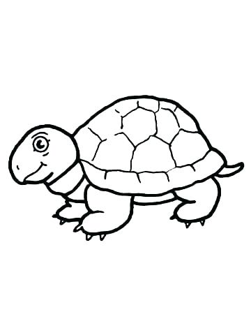 360x480 Tortoise Coloring Page Galapagos Tortoise Colouring Pages