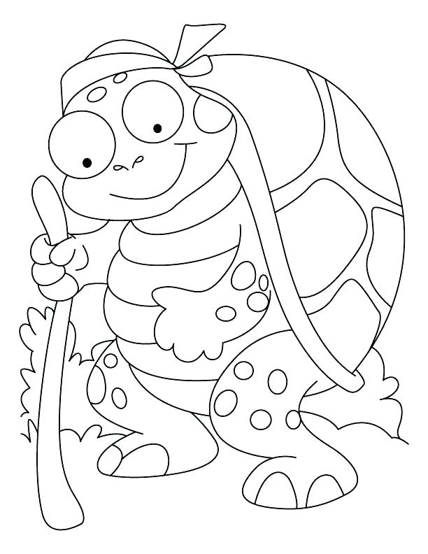 612x792 Tortoise Coloring Page Hare Tortoise Coloring Pages Photos
