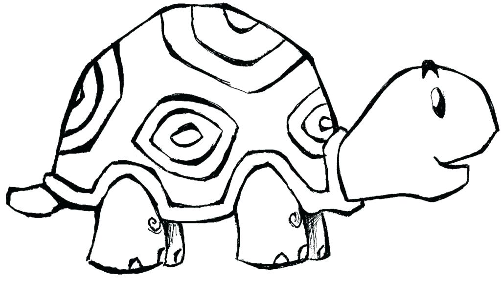 1024x575 Tortoise Coloring Page Tortoise Coloring Page Free Printable