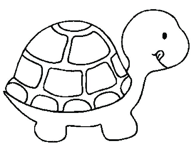 652x504 Tortoise Coloring Page Tortoise Coloring Page Strong Shell