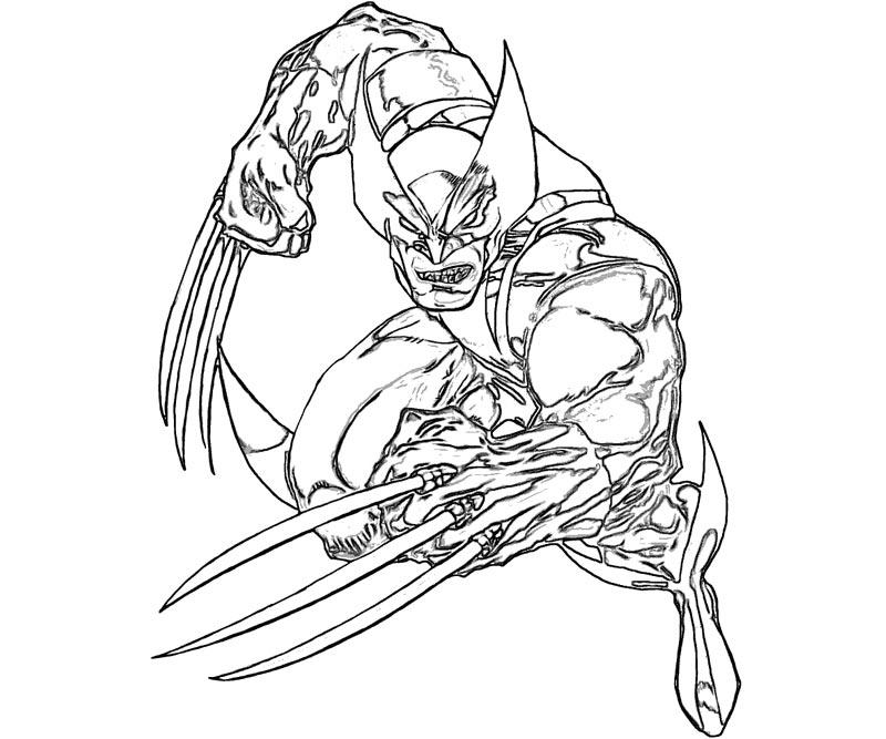 800x667 Wolverine