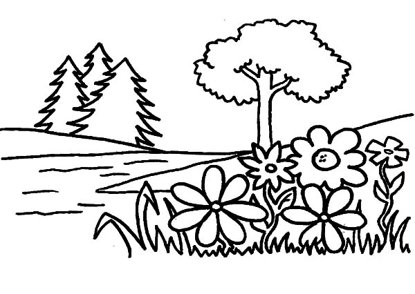 600x426 Flower Garden Coloring Pages Color Luna