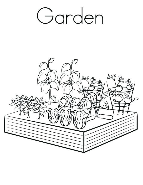 600x776 Garden Coloring Pages Vegetable Garden Coloring Sheets Spring