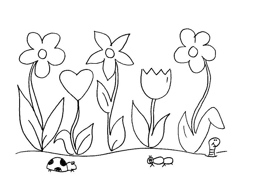 869x633 Gardening Coloring Pages For Kindergarten Page Of Flower Garden