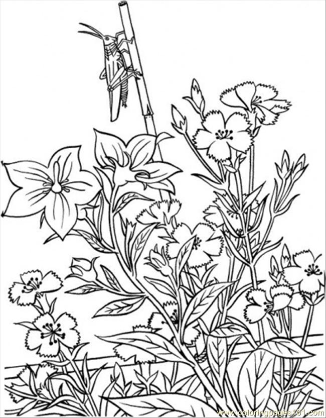 650x832 Opper In Garden Coloring Page Coloring Page