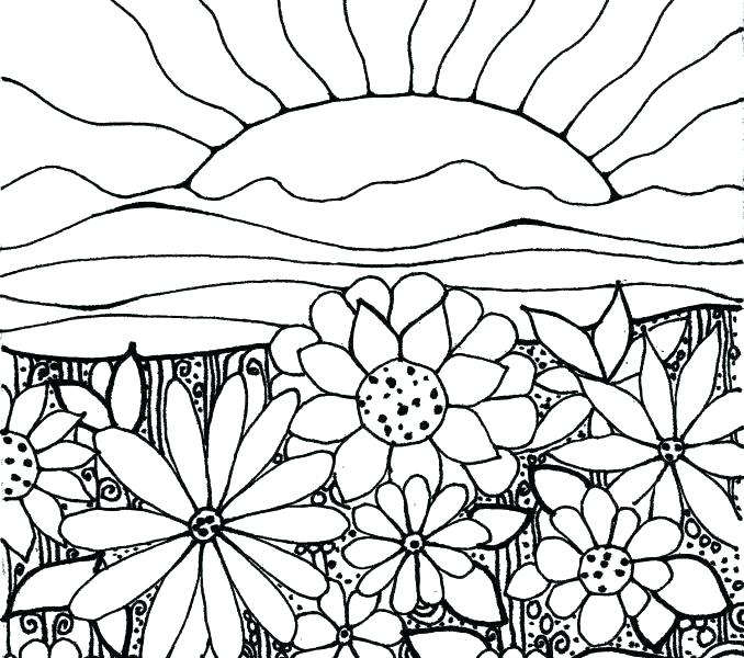 678x600 Flower Garden Coloring Page Butterfly With Flower In The Garden