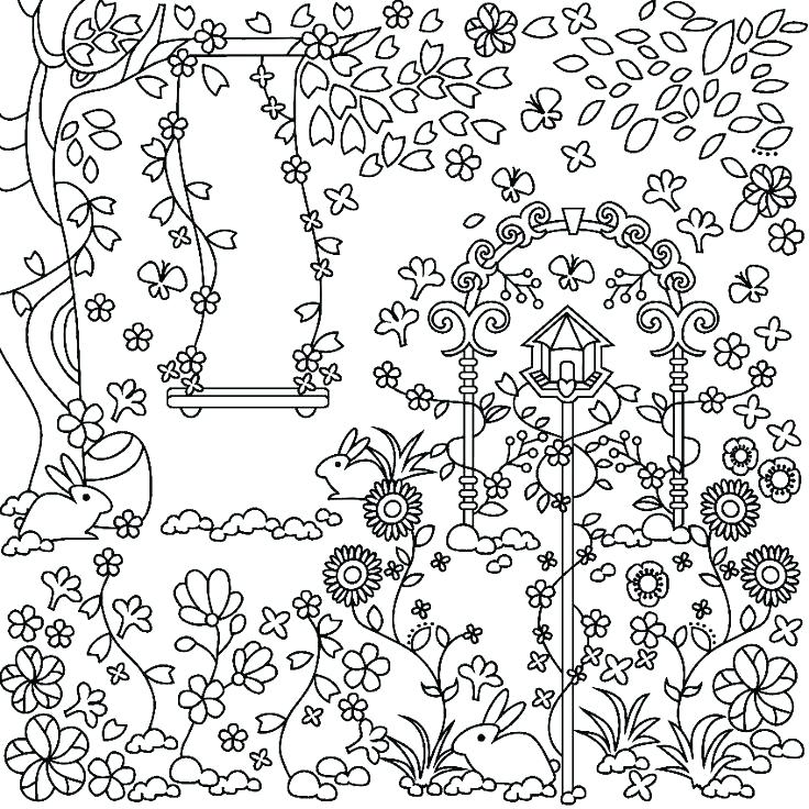 736x736 Garden Coloring Page Butterfly With Flower In The Garden Colouring