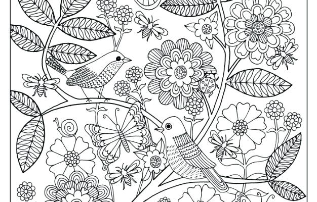 626x400 Garden Coloring Pages Printable Garden Coloring Pages Colouring