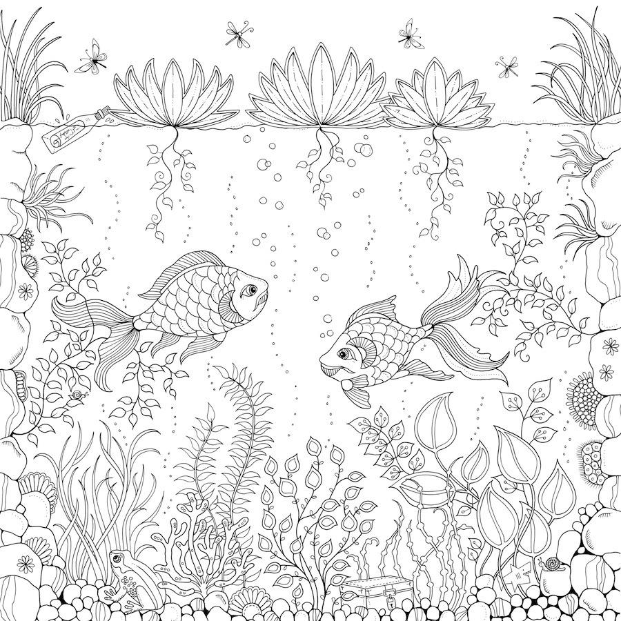 900x900 Secret Garden Coloring Pages