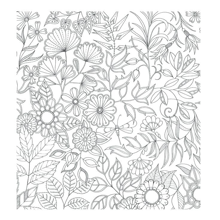 736x736 Enchanting Mandala Coloring Pages Free Printable Garden Coloring