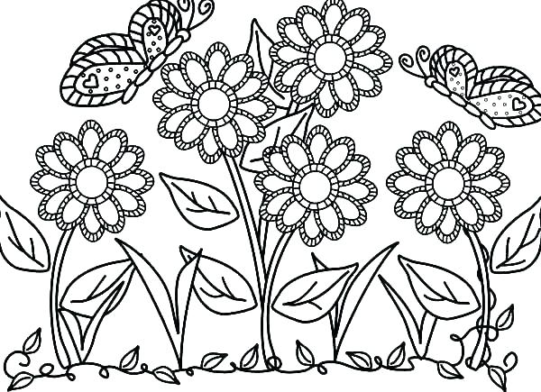 600x435 Flower Coloring Pages Adult Flower Coloring Pages Flower Coloring