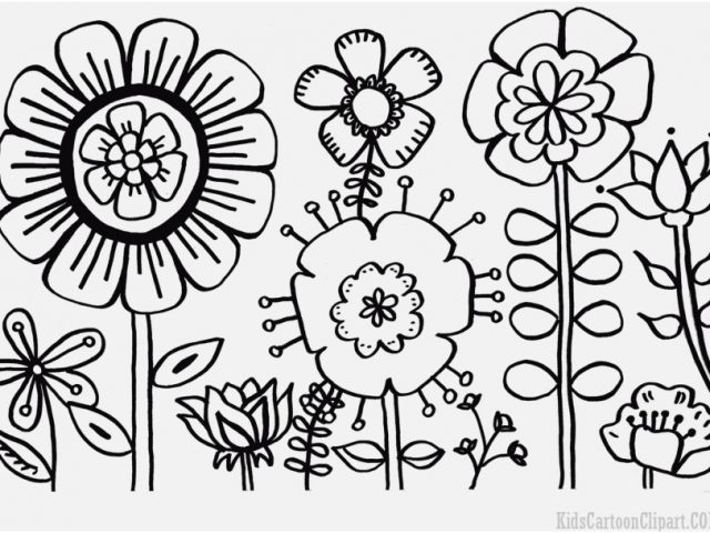 640x480 Garden Coloring Pages Capture Flower Garden Coloring Pages