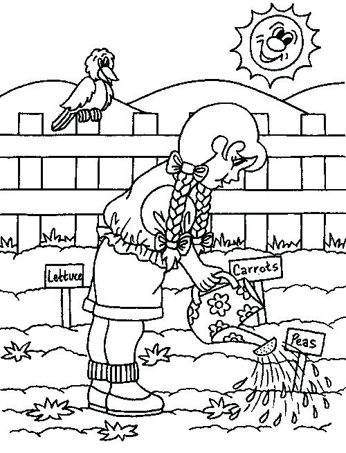 500x654 Gardening Coloring Pages For Preschool Garden Coloring Pages