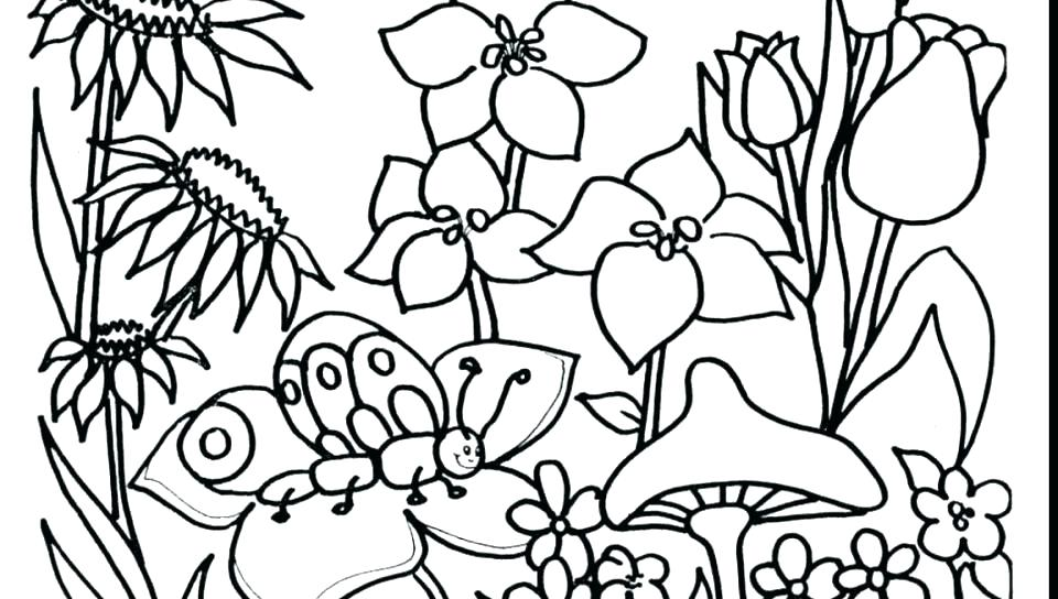 960x544 Butterfly On Garden Spring Day Coloring Picture For Kids Spring