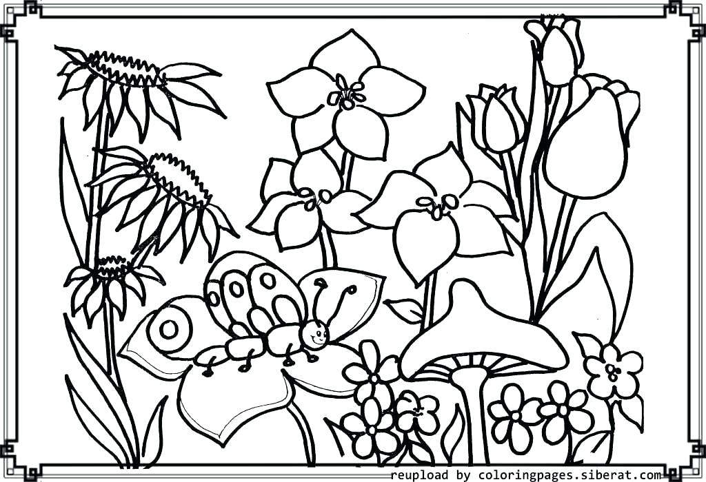 1024x700 Flower Garden Coloring Pages Page House