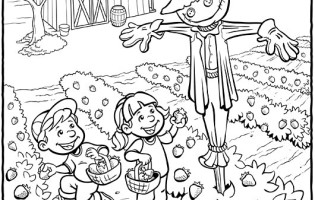 315x200 Garden Coloring Pages