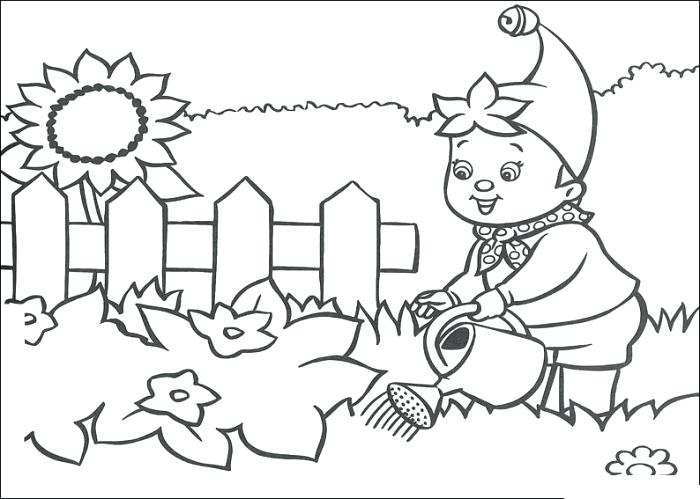 700x499 Gardening Coloring Pages For Preschool Vegetable Garden Coloring