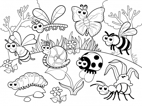 Garden Coloring Pages For Preschool at GetDrawings.com