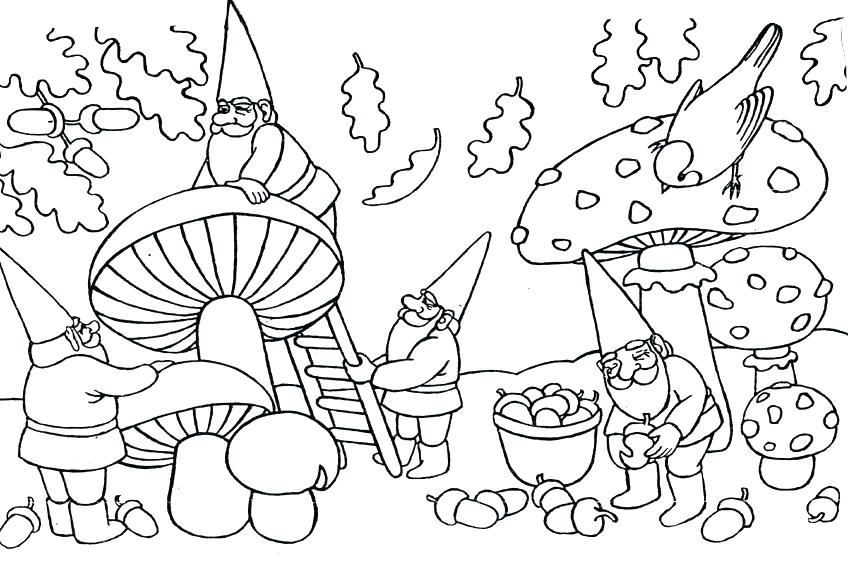 Garden Gnome Coloring Pages At Getdrawings Free Download