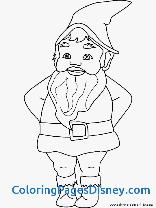 540x720 Gnomes Ampamp Dwarfs Coloring Pages Awesome Garden Gnome Coloring