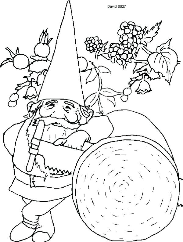 600x793 Garden Gnome Color Pages Free Printable Gnomes Coloring Images