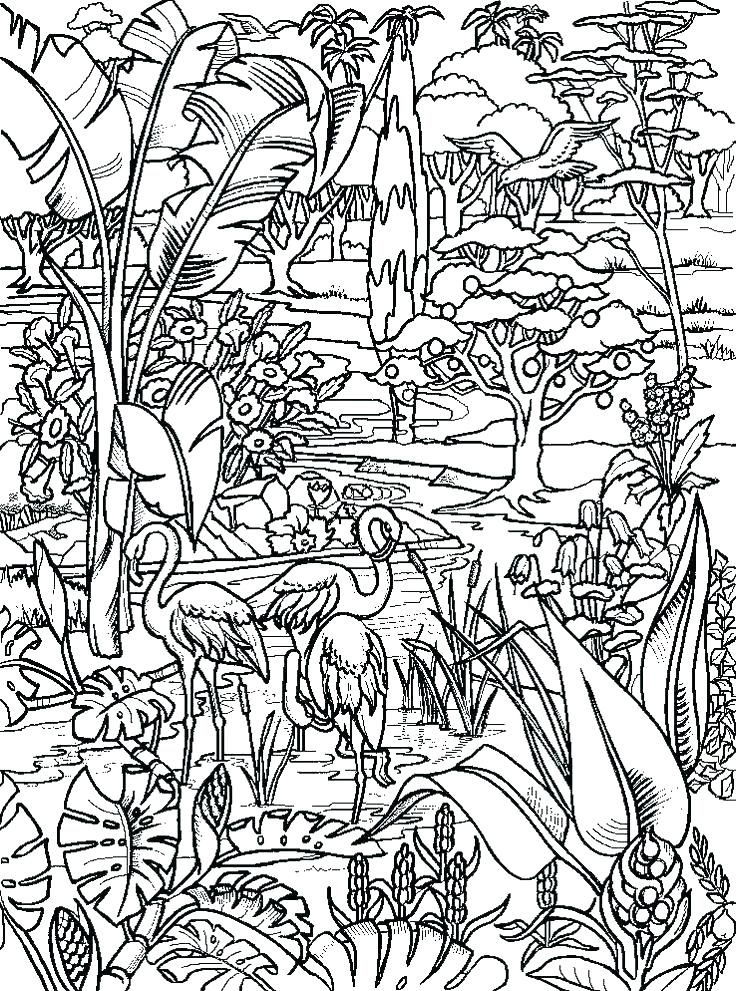 736x991 Garden Of Eden Coloring Pages Freedmme Garden Of Eden Coloring