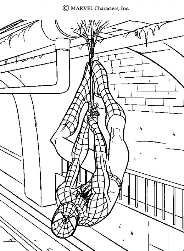 625x850 Spiderman's Webs Coloring Pages
