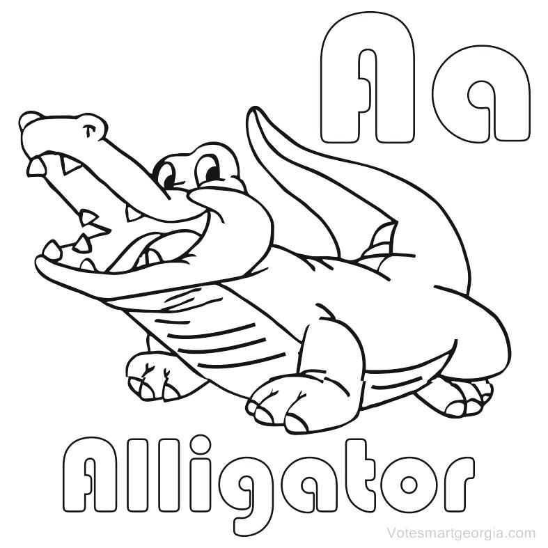 787x787 Alligator Coloring Pages Alligator Coloring Pages Printable