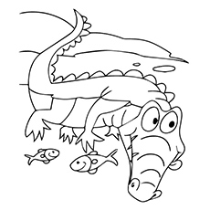 Gator Coloring Page at GetDrawings.com | Free for personal use Gator ...