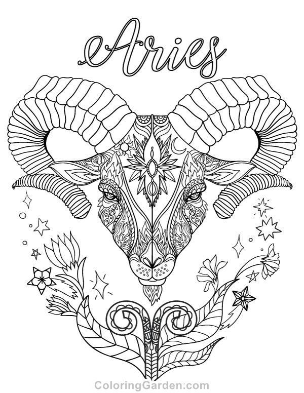600x776 Best Colouring Zodiac Signs Images